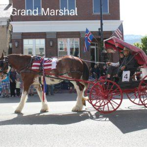 Grand Marshal of Scandinavian Festival